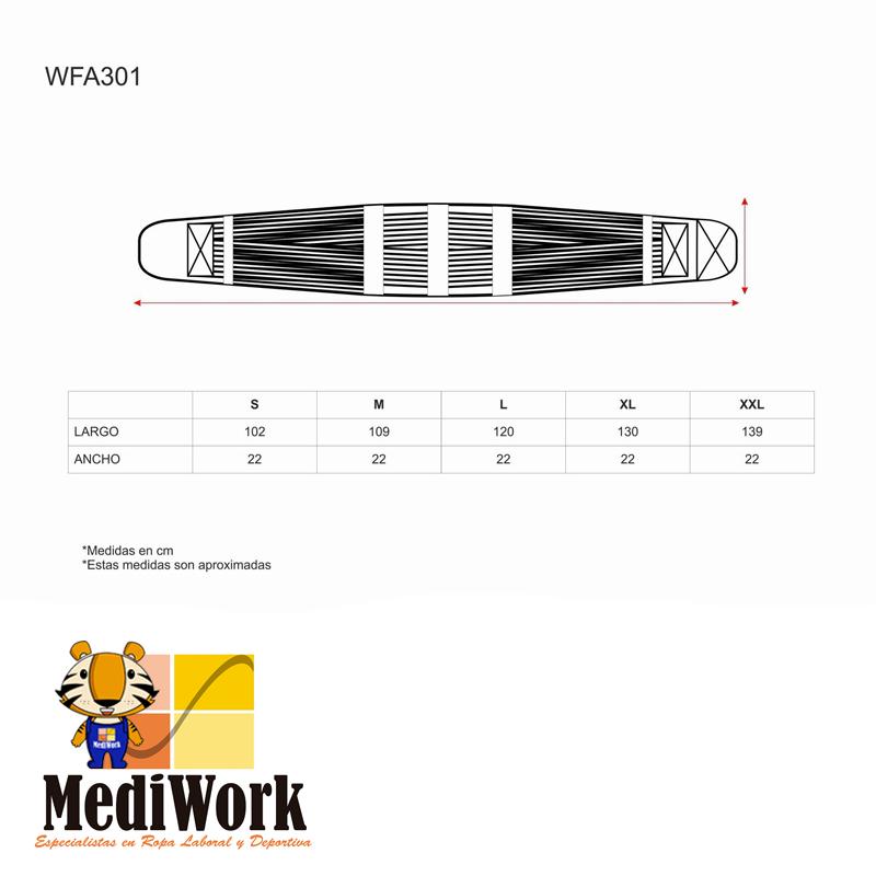 Cinturon Lumbar Support WFA301 01